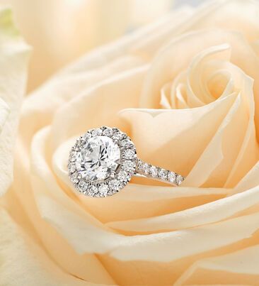 Engagement Styles. Ready to pop the question? Image of five engagement rings.