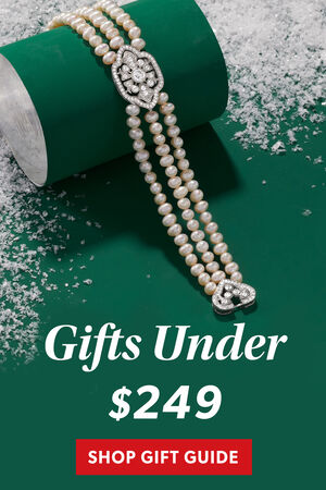 Gifts Under $249. Shop The Gift Guide
