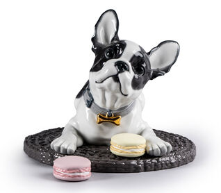 Pet Accessories. For the love of our furry friends. Shop now. Image of a figurine dog.