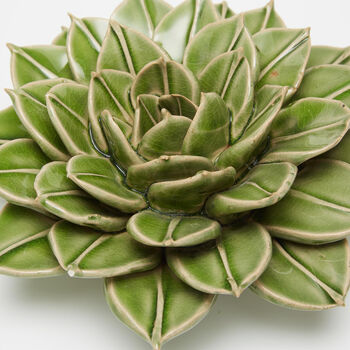 Set of Seven Green Porcelain Decorative Succulent Wall Sculptures, , default
