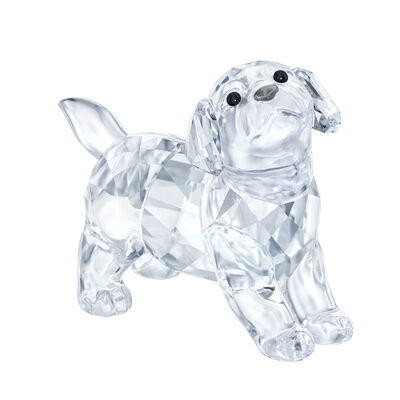 Swarovski Crystal Labrador Puppy Standing Figurine