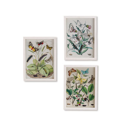 "Set of 3 ""Garden Charms"" Butterfly Paper Collage Wall Art, , default"