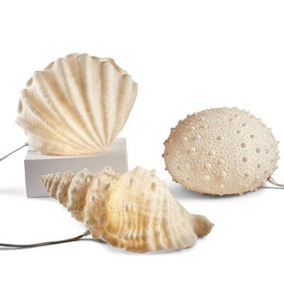 Set of 3 Sea Life Lamps, , default