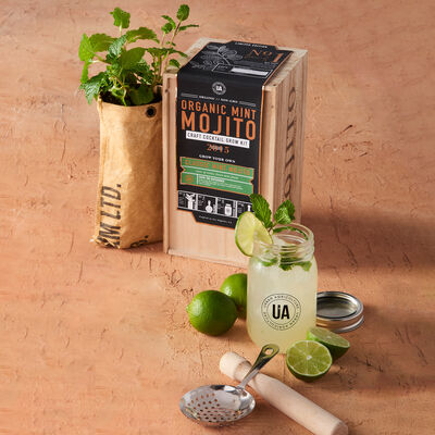 "Urban Agriculture Craft Cocktail Grow Kit ""Mint Mojito"", , default"