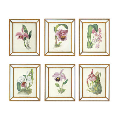 "Set of 6 ""Orchidees"" Orchid Wall Prints in Gold-Trim Mirror Frames, , default"