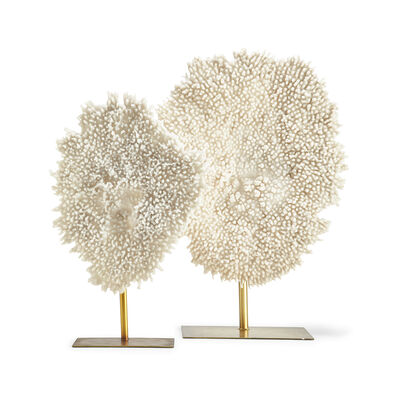 Set of 2 White Coral Sculptures, , default