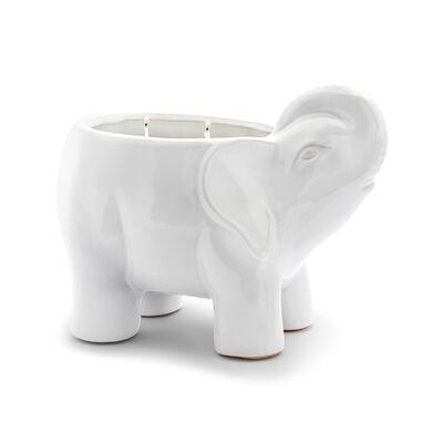 "Thompson Ferrier ""Lotus & Lily"" White Elephant Candle, , default"